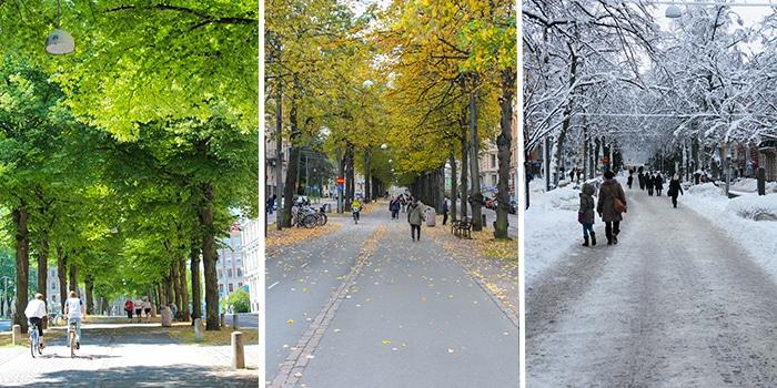 Vasagatan årstider